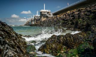 Oprichting Delta Kenniscentrum: impuls voor Zeeuwse economie
